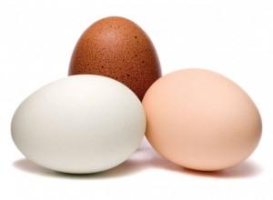 Eggs-660x484
